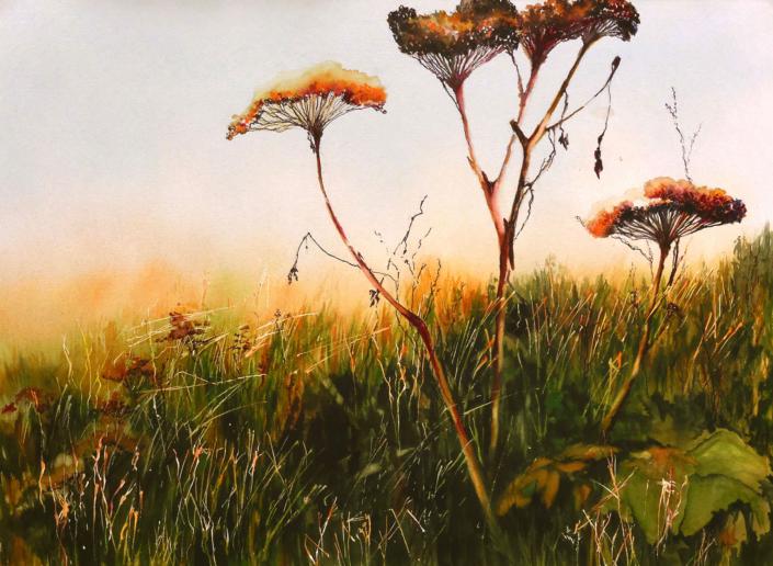 Weeds in Sun